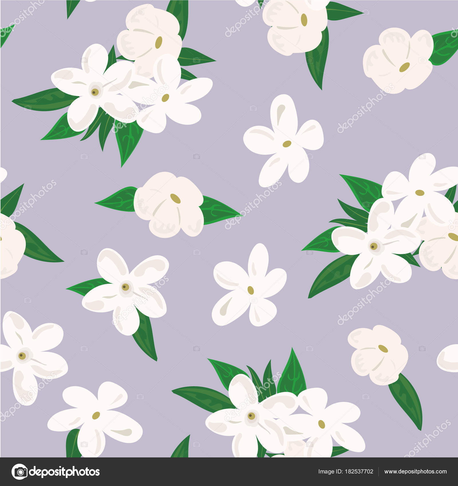 Vector Seamless Pattern With Jasmine Flowers On Purple Background