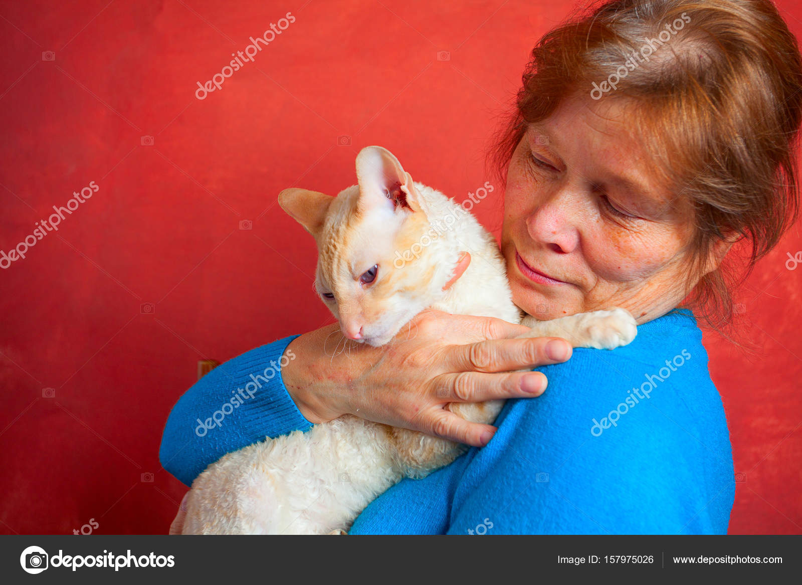 Beautiful Cat With Curly Hair Stock Photo C Solstzia 157975026