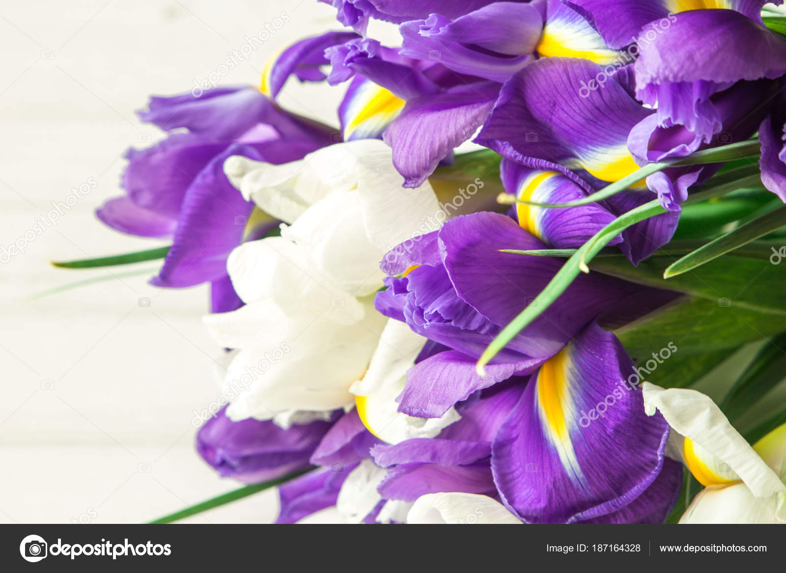 Mazzo Di Fiori Iris.Bouquet Of Iris Flowers On White Wooden Table Stock Photo