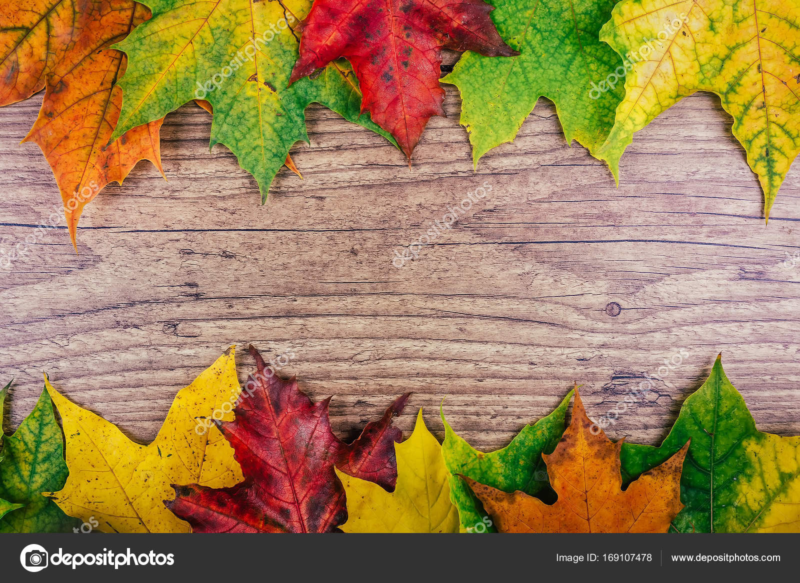 Autumn Background With Colorful Fall Maple Leaves On Rustic Wooden Table Thanksgiving Holidays Concept