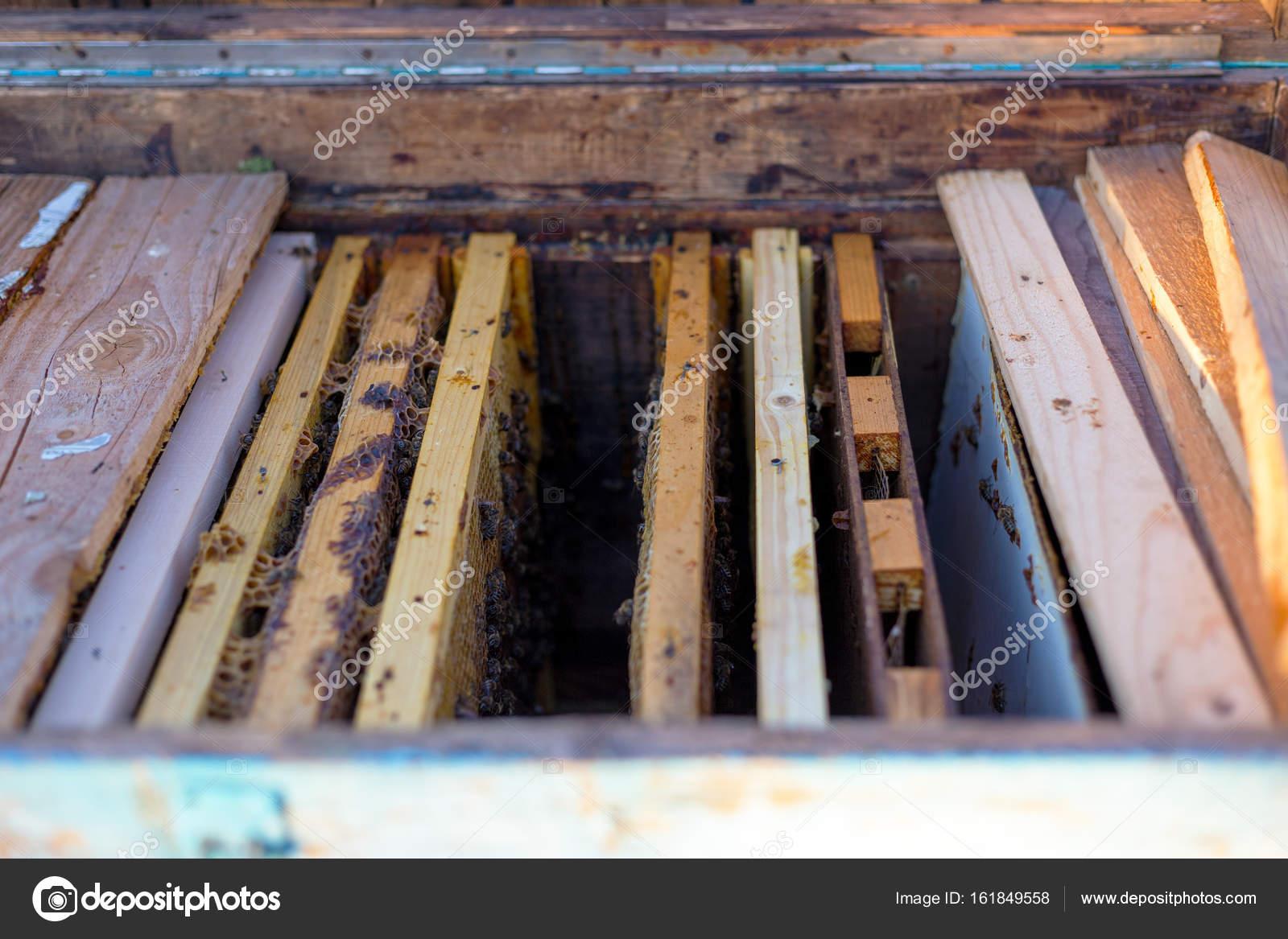 Open Bee Hive und Waben Rahmen — Stockfoto © radu.cadar.gmail.com ...