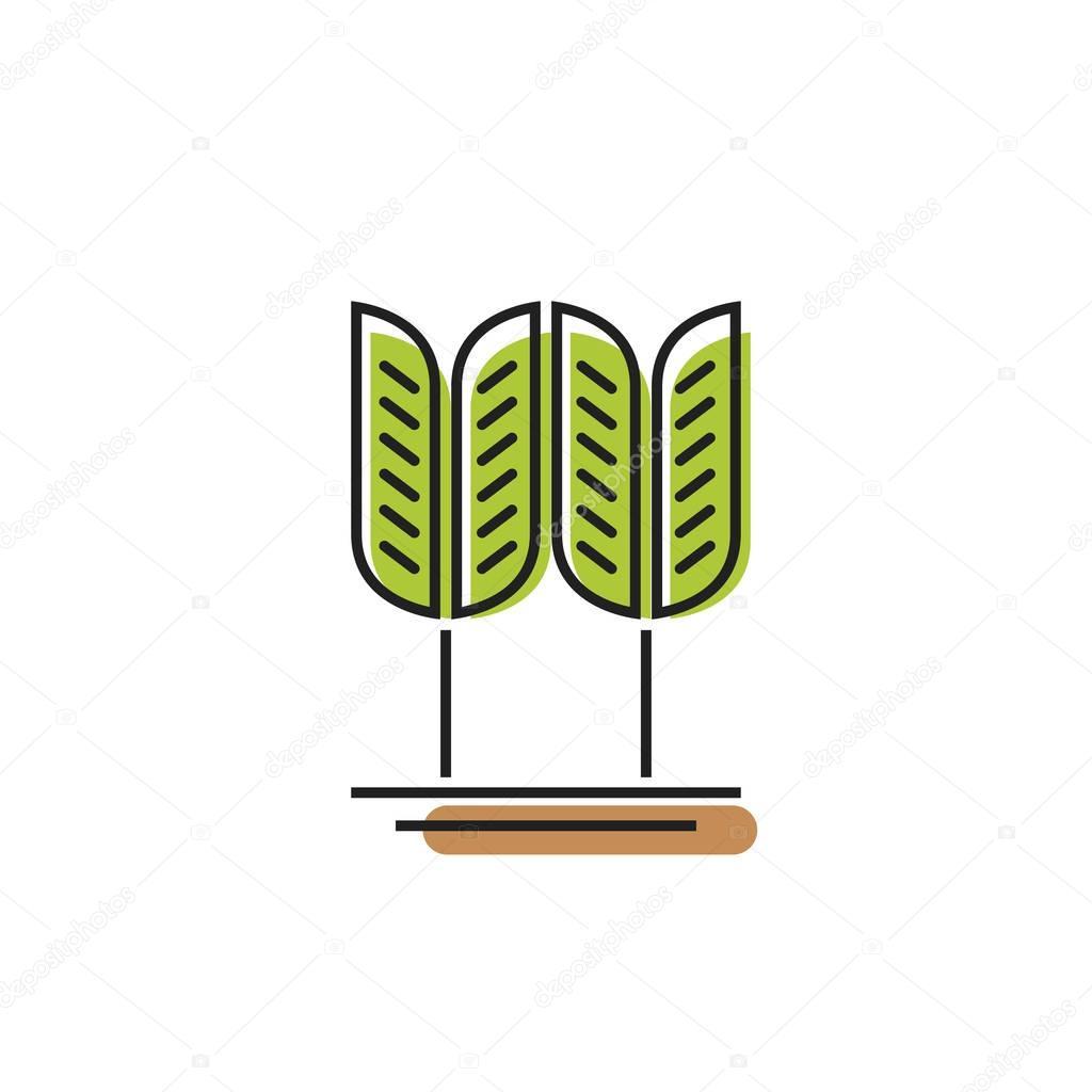 Cereales símbolo verde trigo grano vector logotipo, espiga bakery ...