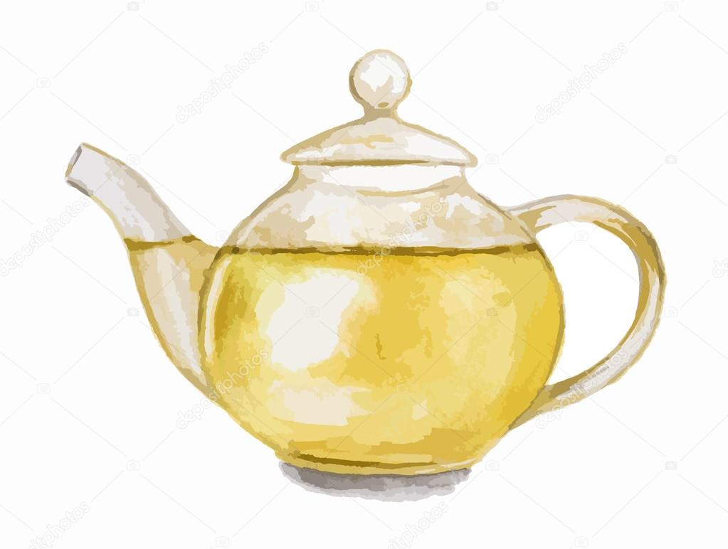 Watercolor green tea pot.
