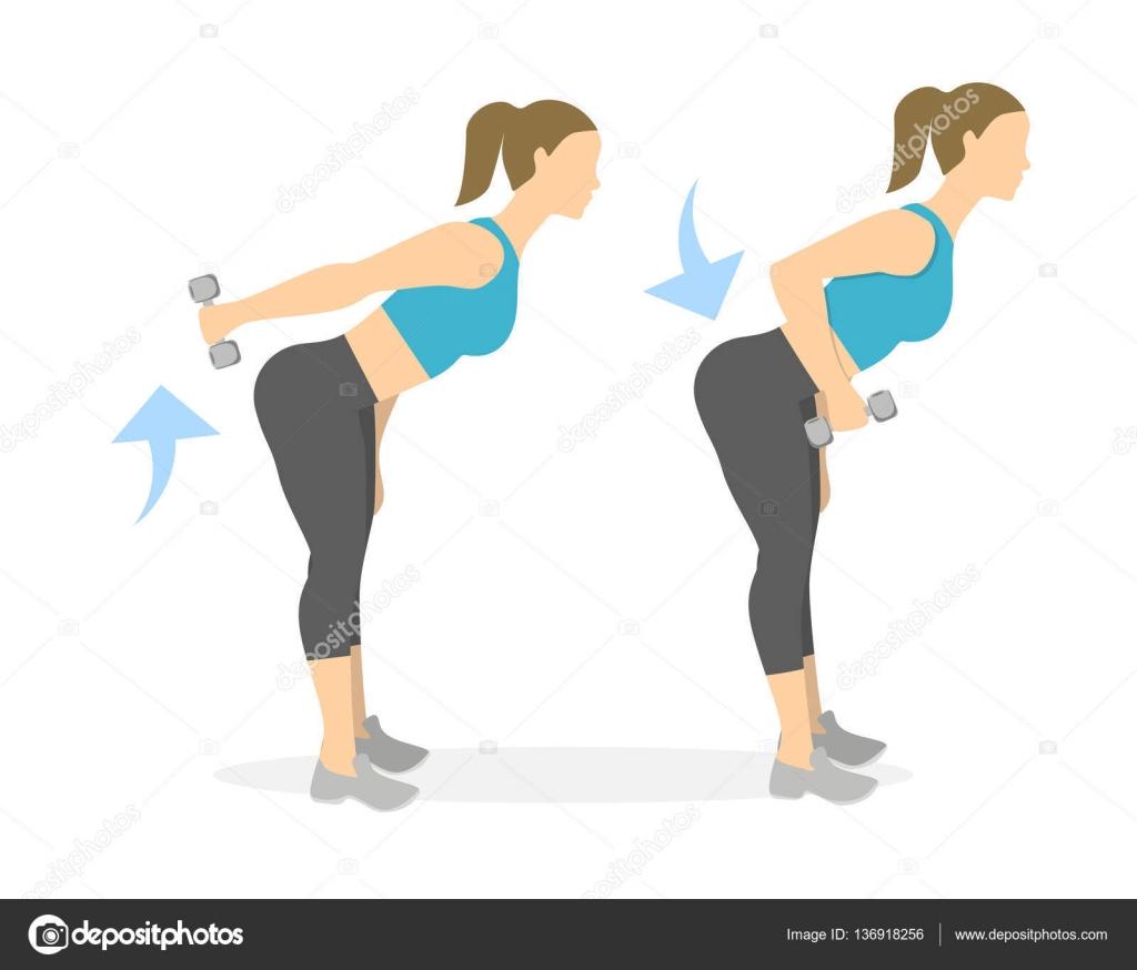 exercice dos femme