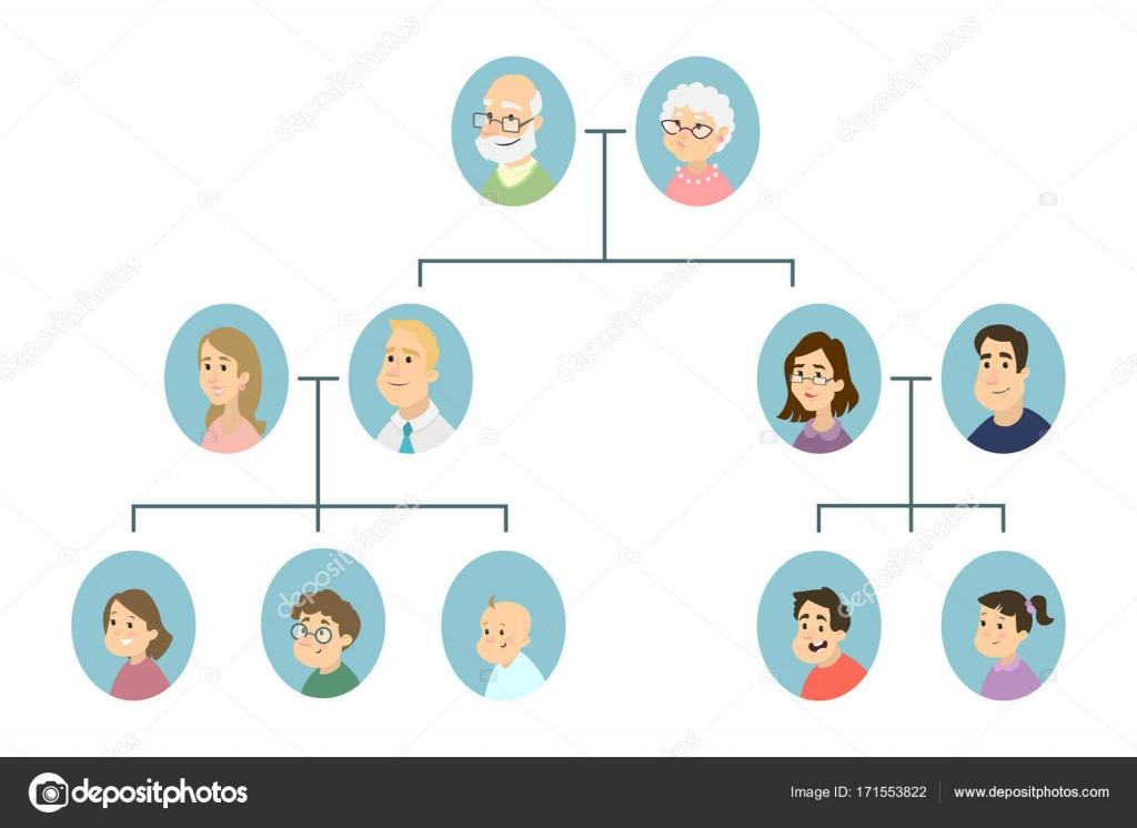 分離の家系図 ストックベクター Inspiringvectorgmailcom 171553822