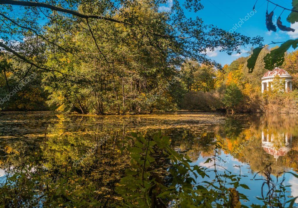 Piccolo stagno nella foresta riflesso sull 39 acqua foto for Piccolo stagno