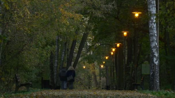 Pár az őszi este lámpák fénye padok mentén gyalogút Park Alley férfi és nő töltenek időt együtt arany sárga levelek Birches Alkonyat séta