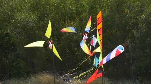 Persone volare aquiloni mulini a vento bandiere imbuto che ondeggiano al vento aquiloni Festival Leba Polonia persone trascorrono il tempo in giornata di sole famiglie Costa Verde alberi