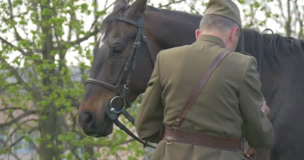 Erwachsener Mann und junges Mädchen überprüfen Pferdegeschirr