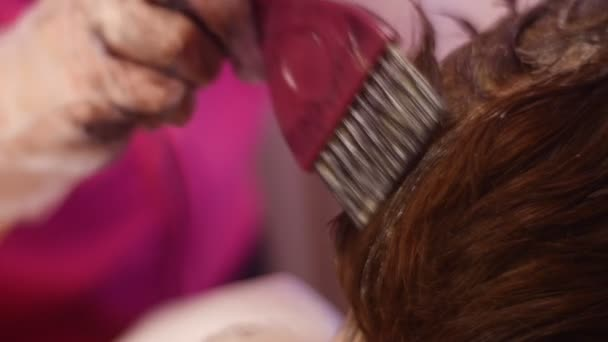 Fodrász kezében alkalmaz a színes hajszín tippek és trükkök Stylist mint hobbi ügyfél fej nő is így frizura a neki barátja otthon vagy szalon