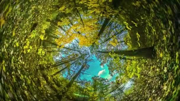 Ég felett fák Park Rabbit Hole bolygó 360 fokos túra-Lengyelország turisztikai természet megfigyelési utazás a gyönyörű táj őszi Forest Park