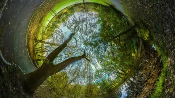Rabbit Hole bolygó 360 fokos Park utazótáska a világ gyönyörű táj sárga levelek és zöld fű őszi természet sikátorban városi Park vagy az erdő