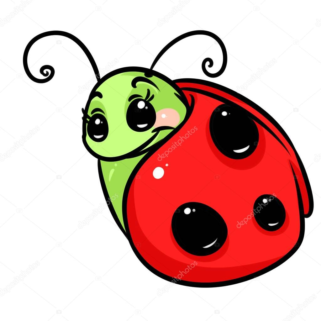 dibujos mariquita animados dibujos animados de insectos mariquita
