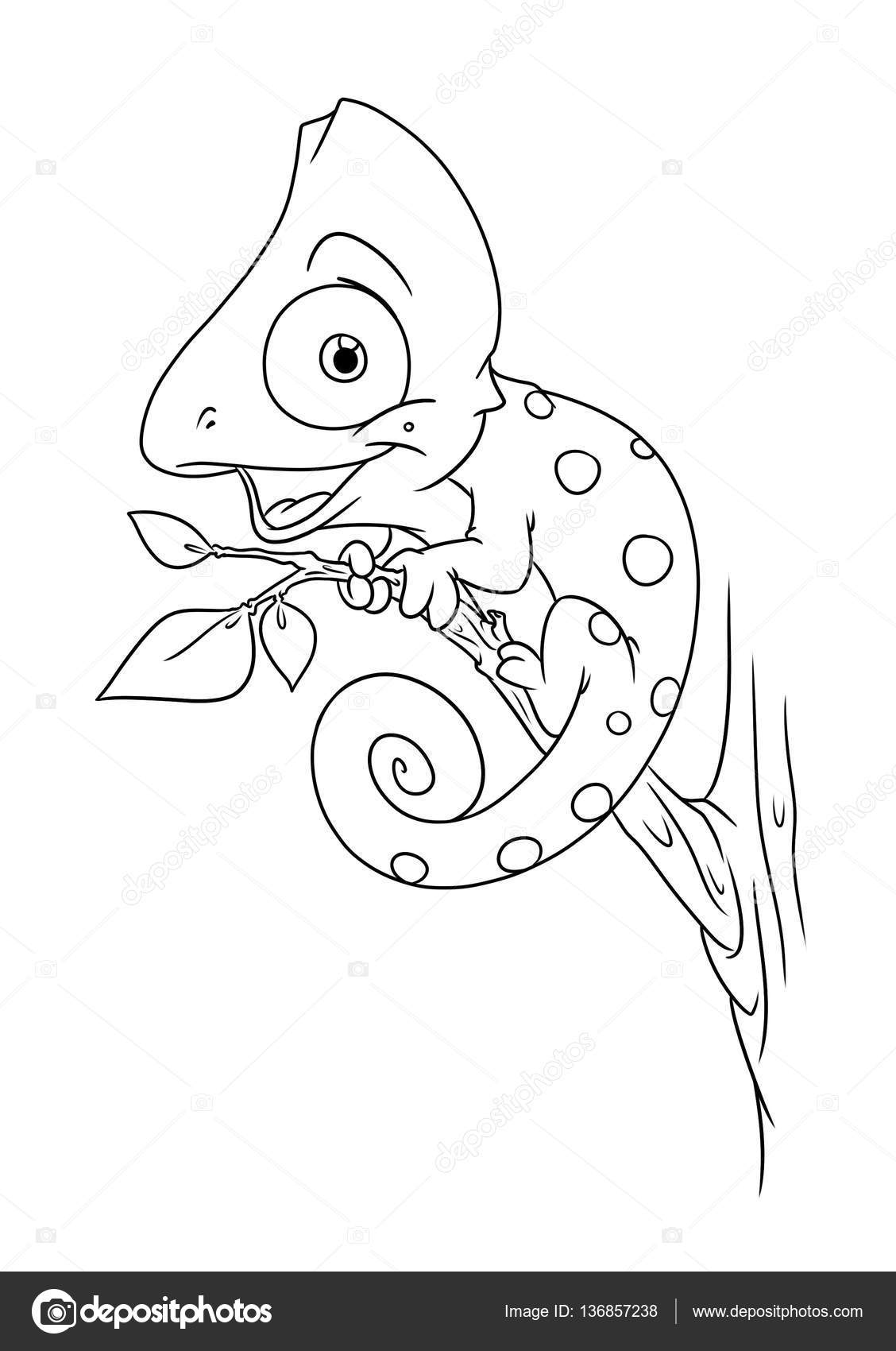 Chameleon Animal Coloring Pages Cartoon Stock Photo Image By C Efengai 136857238