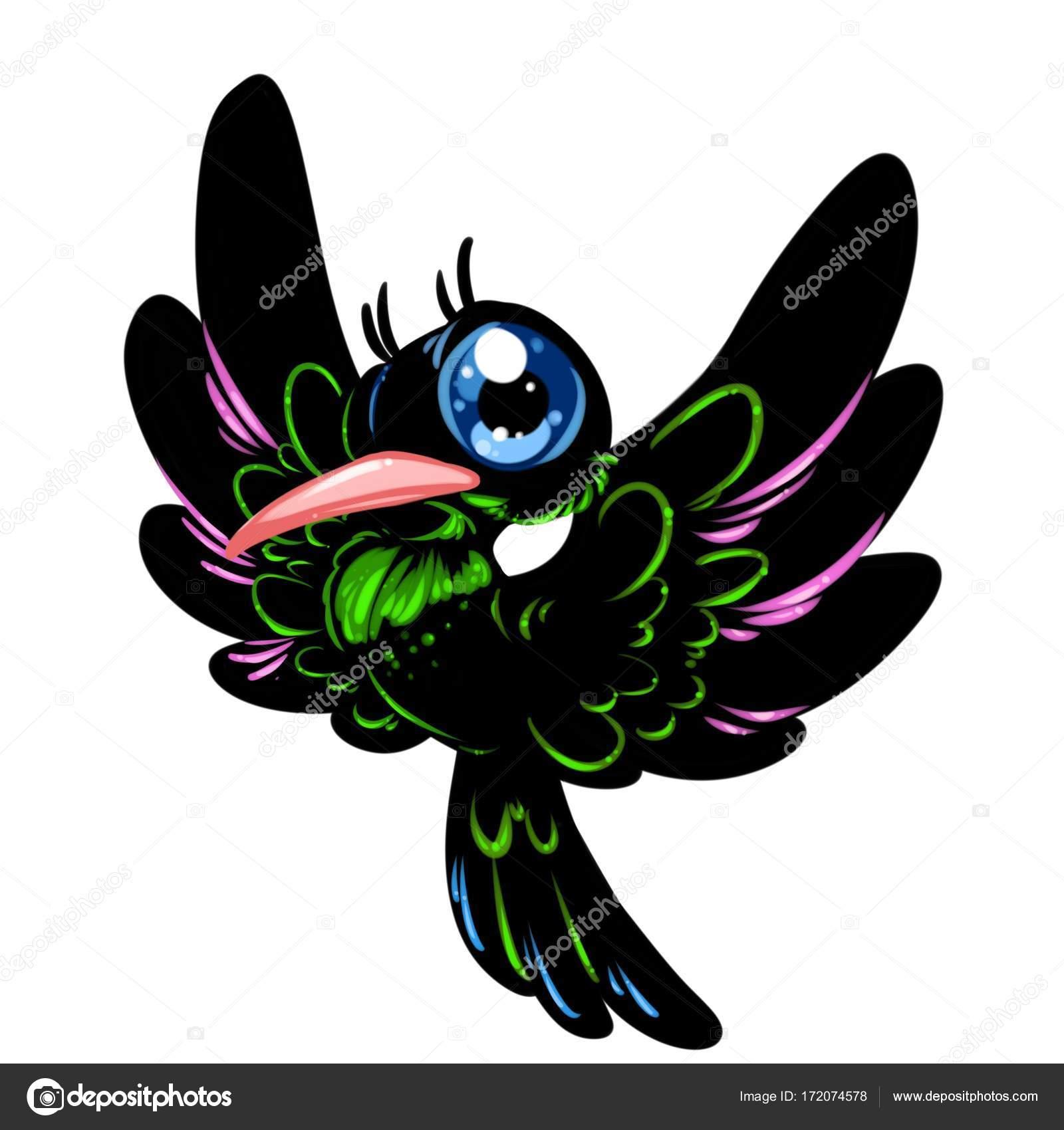 beija flor pássaro preto olhos grandes fotografias de stock