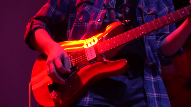 The musician plays solo on acoustic electro bass guitar at a rock concert