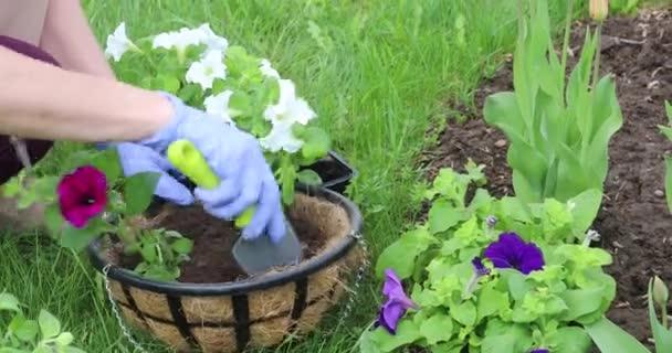 Mladá žena zasadí květiny do květináčů. Zahradnictví na jaře na pozemku