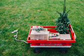 Fotografie  cart with Christmas tree