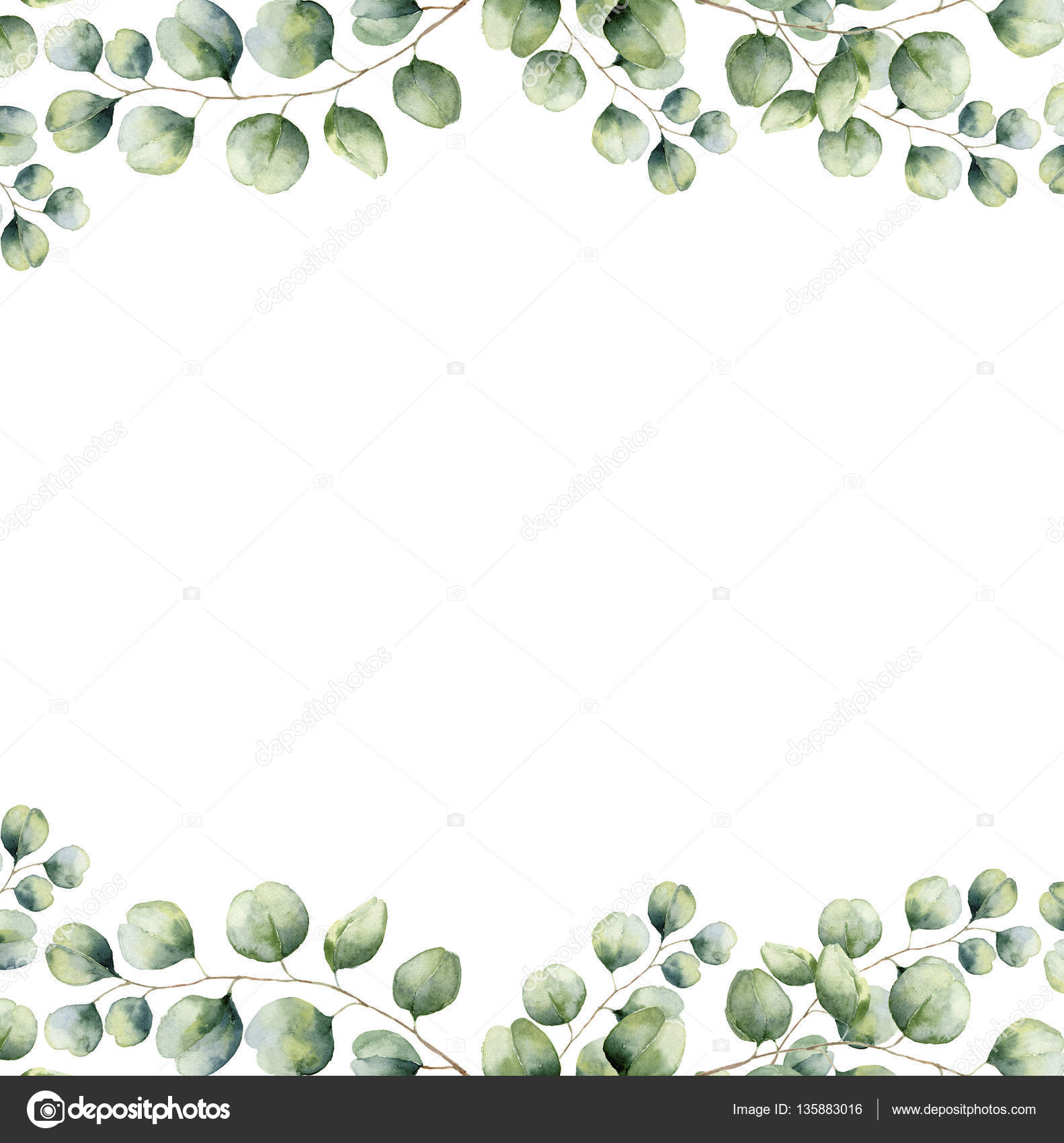 Watercolor green floral frame card with silver dollar eucalyptus ...