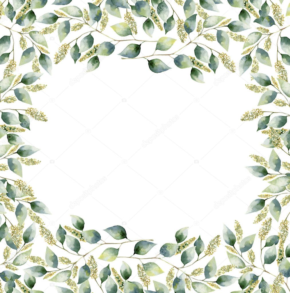 Watercolor floral frame card with eucalyptus leaves. Hand painted border with branches and leaves of seeded eucalyptus isolated on white background. For design or background