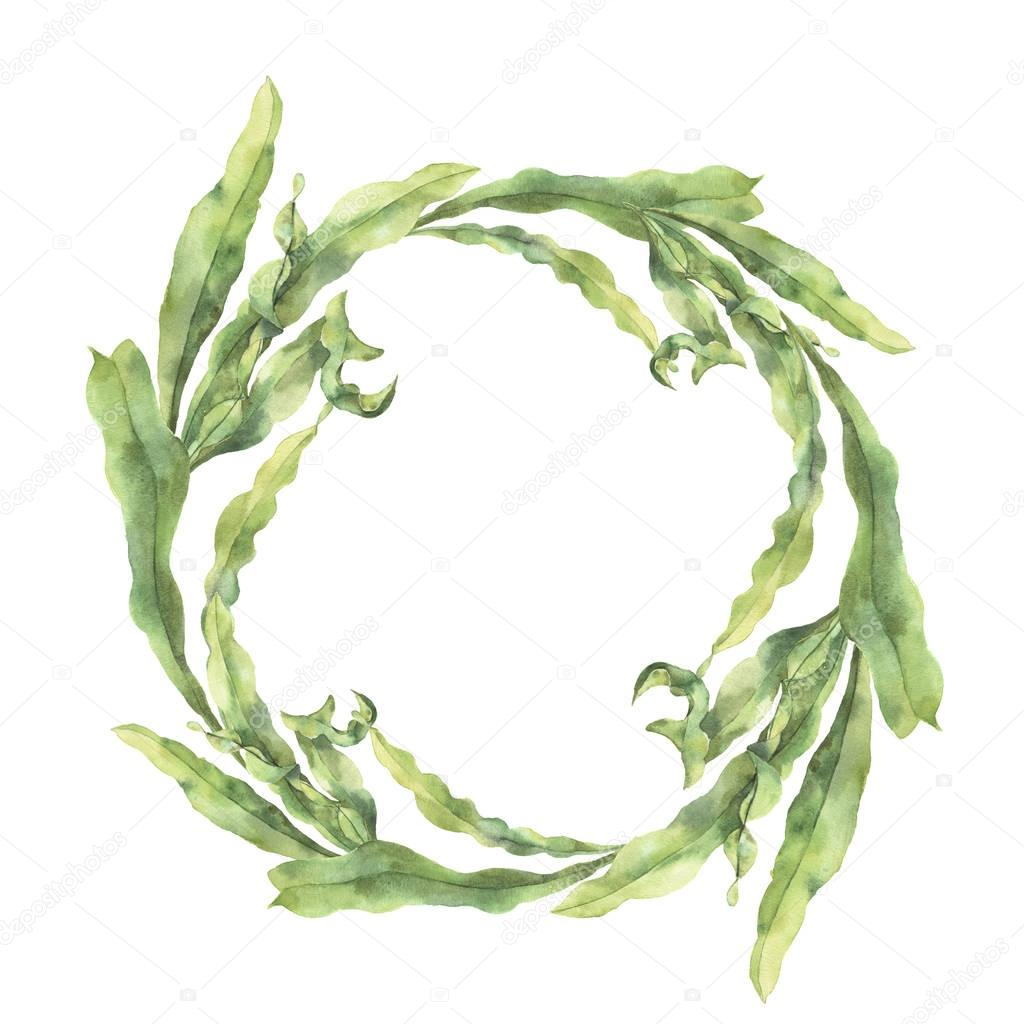 Watercolor wreath with laminaria. Hand painted underwater floral illustration with algae leaves branch isolated on white background. For design, fabric or print.