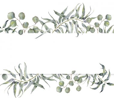 Watercolor card with eucalyptus branch. Hand painted floral frame with round leaves of silver dollar eucalyptus isolated on white background. For design or print