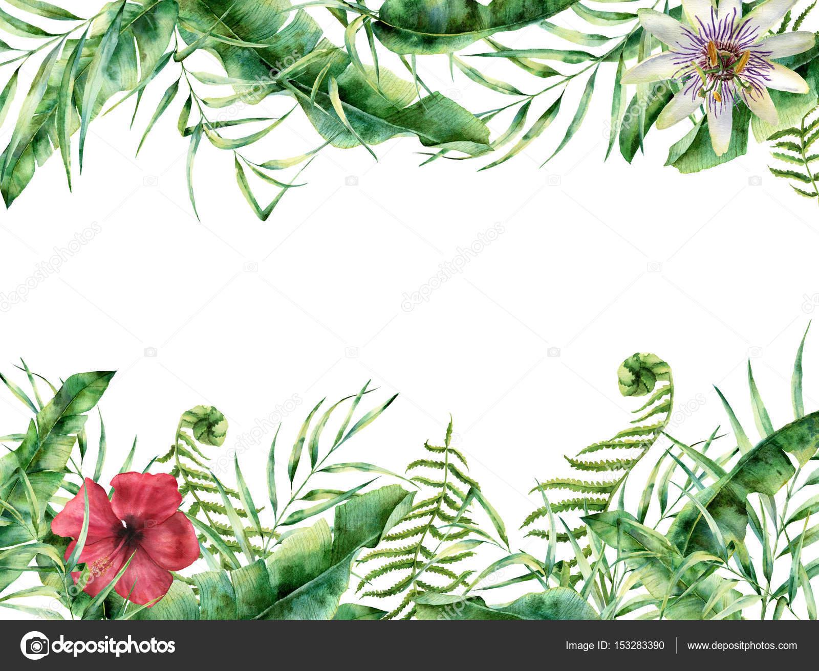 Tarjeta floral tropical acuarela. Marco de verano con pintadas ...