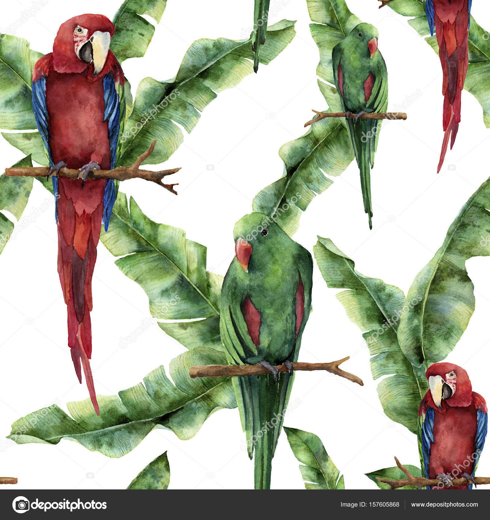 aquarelle transparente motif avec des perroquets et des feuilles de
