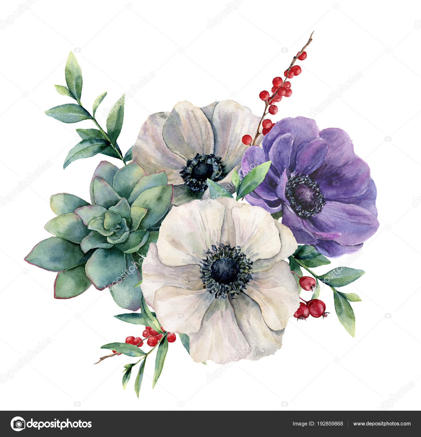 Watercolor White Anemone And Succulent Bouquet Hand Painted Colorful Flower Eucalyptus Leaves And Berries Isolated On White Background Illustration For Design Fabric Print Or Background Stock Photo Image By C Derbisheva 192859868