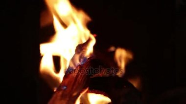 Burning camping fire in the night dark background