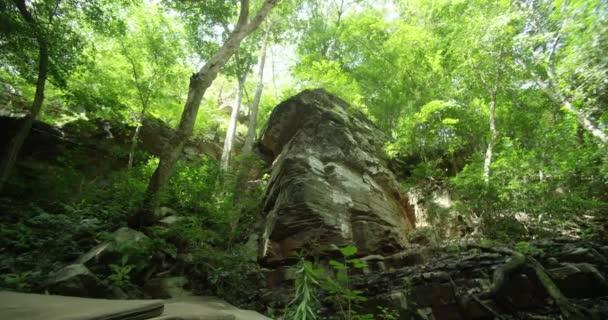 Horské vrcholy pokryté tropickým lesem na tropickém ostrově.