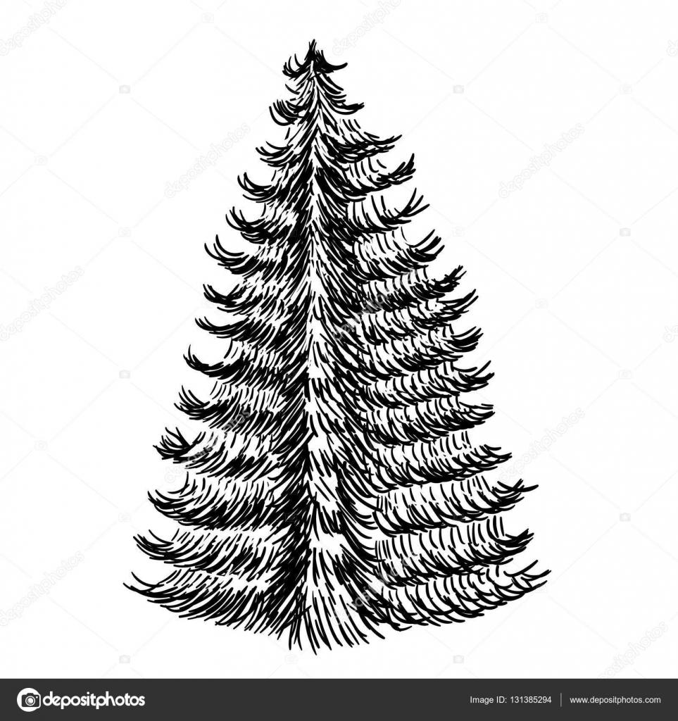 handgezeichnete skizze von weihnachtsb umen symbol mit einem strukturierten tanne baum vektor. Black Bedroom Furniture Sets. Home Design Ideas