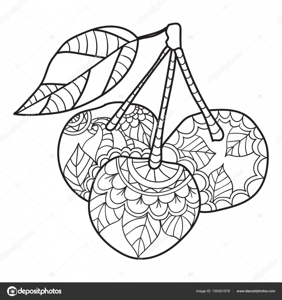 Coloring Pages For Adults Cherry Sketch Fruits Vector Illustration