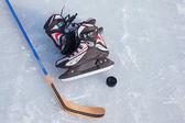 Hokejka a puk na kluzišti