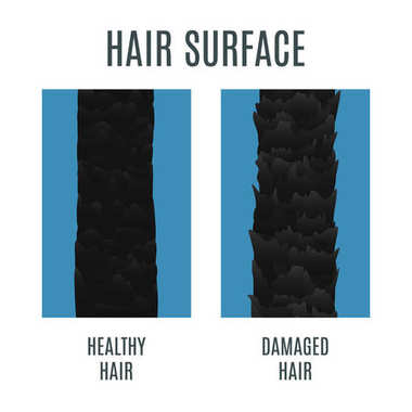 Healthy and damaged hair surface