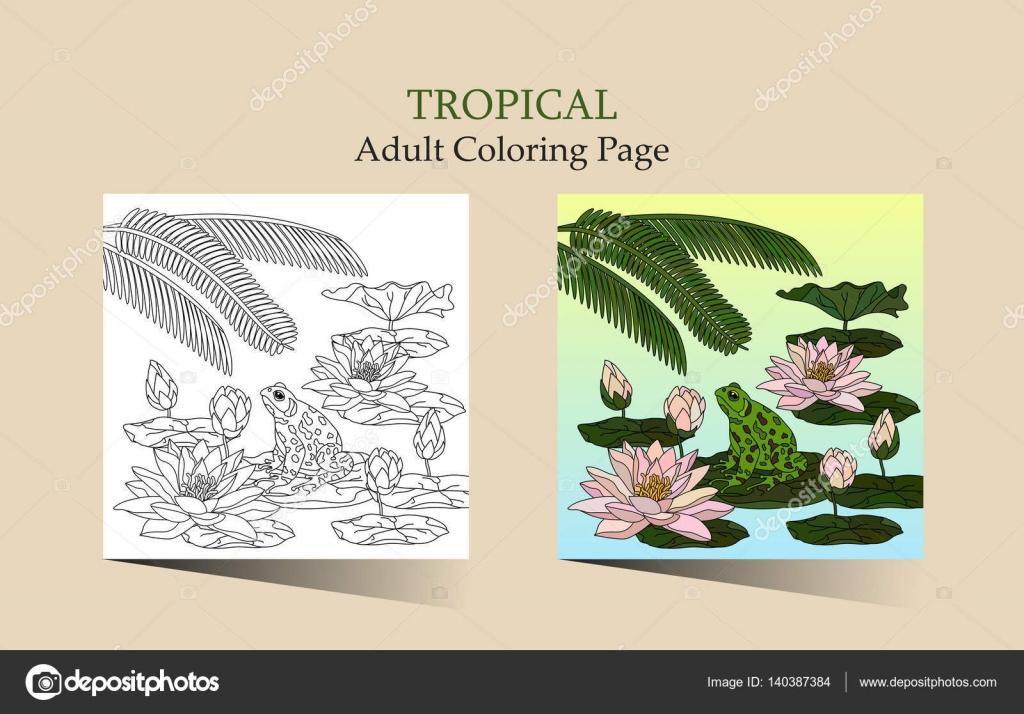 Página para colorear antiestrés adultos — Vector de stock ...