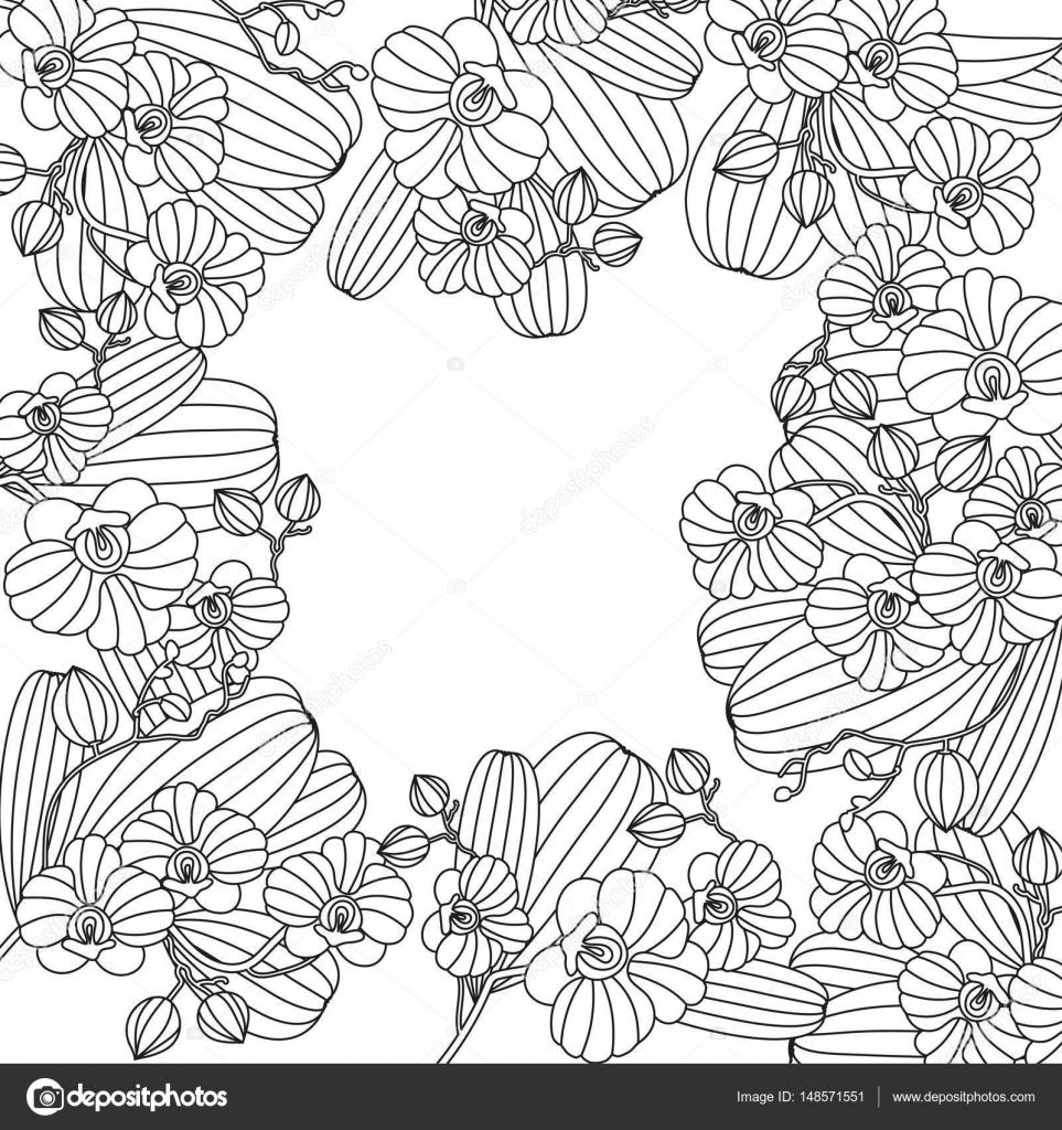Tarjeta con flores tropicales - orquídea — Archivo Imágenes ...