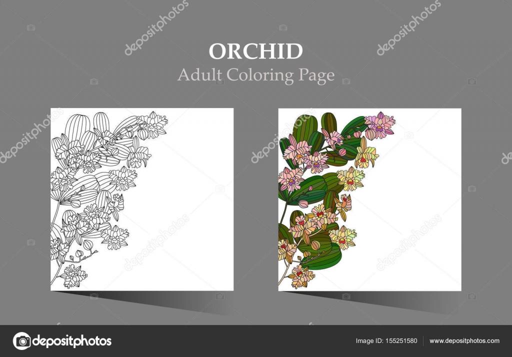 Karten mit tropischen Blumen - Orchidee — Stockvektor © trihubova ...