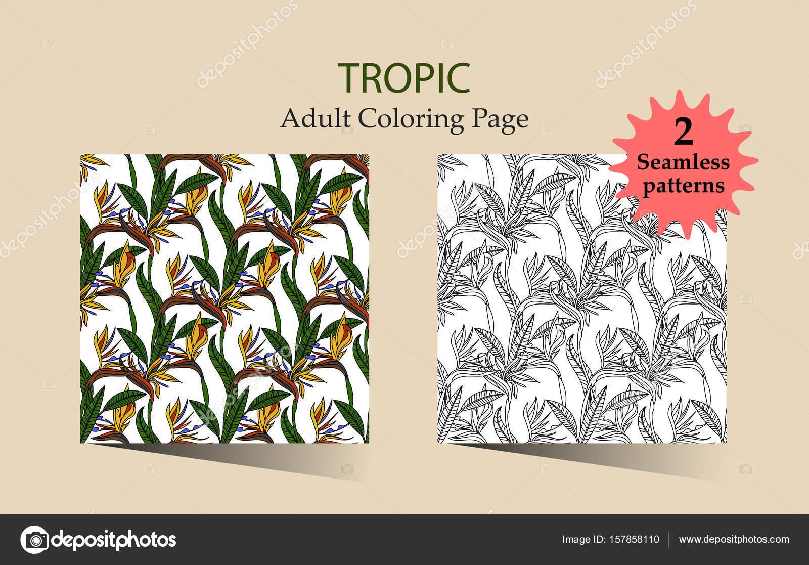 Zen y Anti estrés - páginas para colorear para adultos — Vector de ...