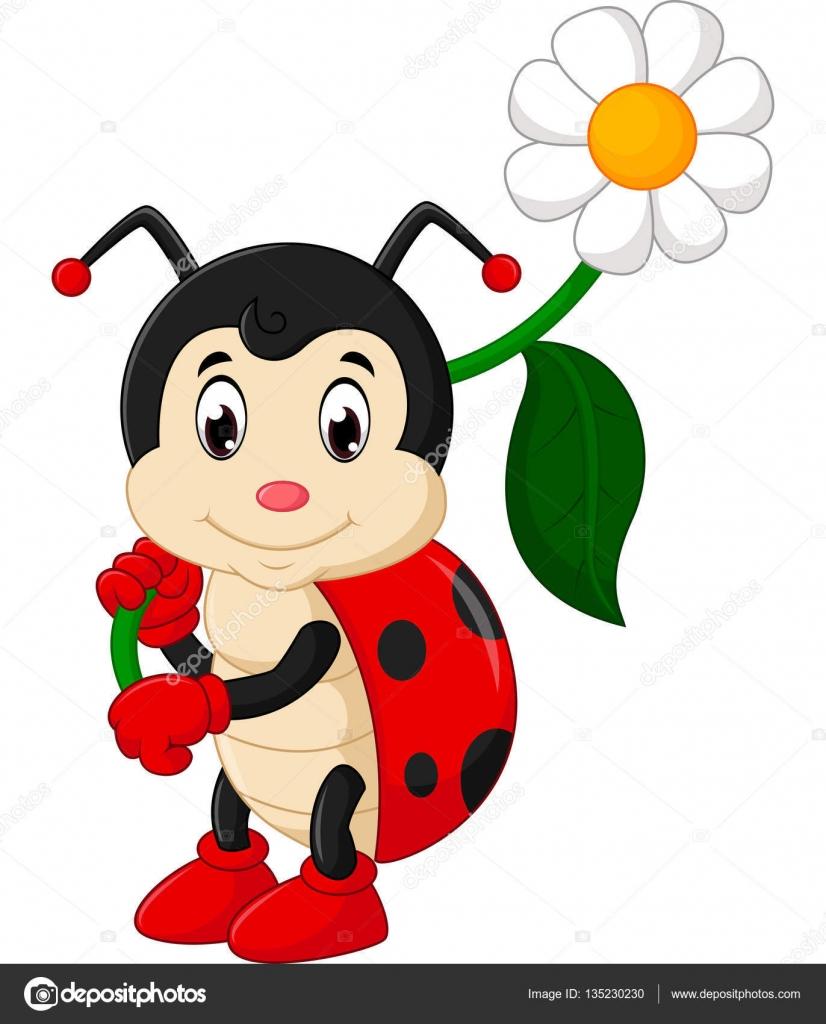 Desenho Joaninha ~ desenho de joaninha cute u2014 Vetor de Stock u00a9 hermandesign2015@gmail com #135230230