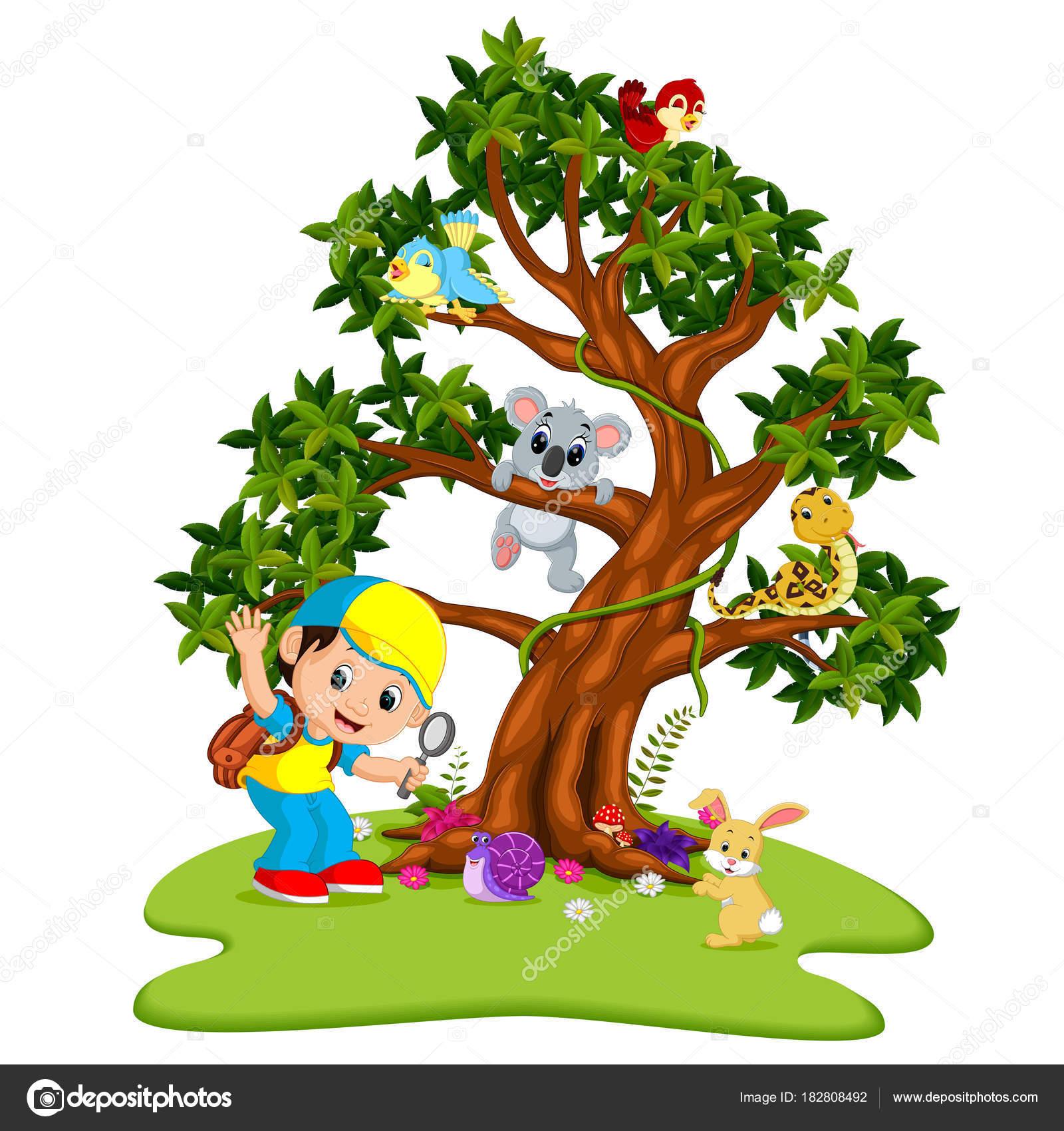 Viele Tiere Auf Den Bäumen Mit Jungen Der Lupe ...