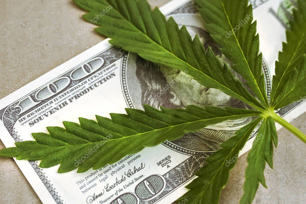 Marijuana with a hundred-dollar bill of the USA Franklin. Money with a cannabis leaf