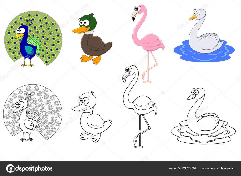 Renkli Kuşlar Ve Kroki Için Renk Olan Okul öncesi çocuklar Için