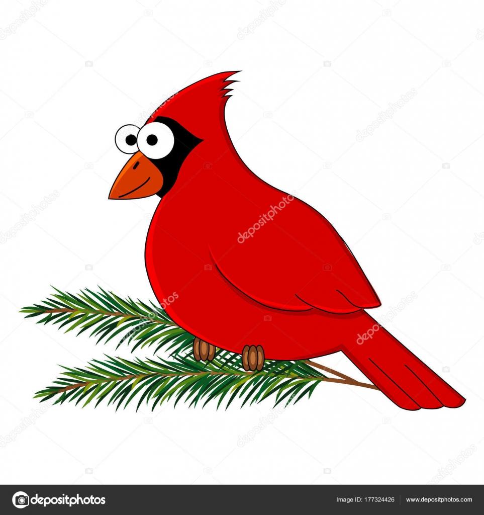 Aves cardenal Funny cartoon — Vector de stock © BudOlga #177324426