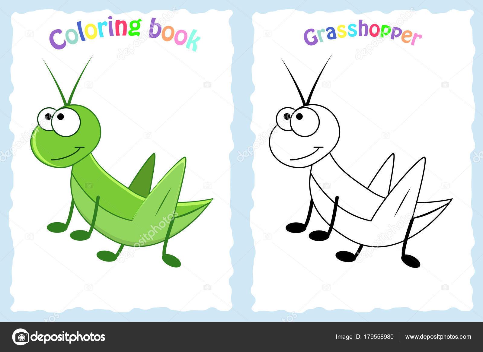 Buch-Malvorlagen für Kinder im Vorschulalter mit bunten Grashüpfer ...