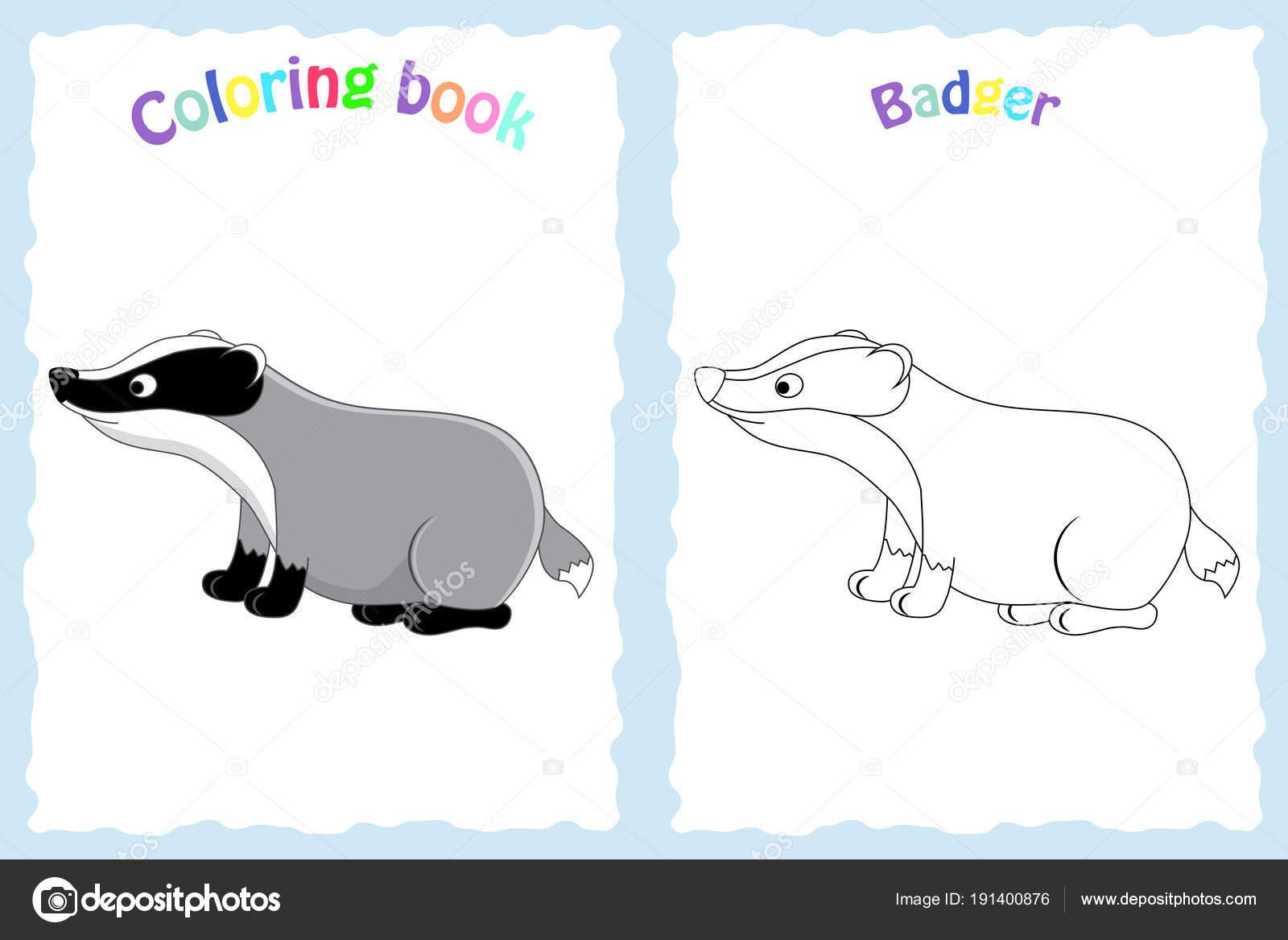 Buch-Malvorlagen für Kinder im Vorschulalter mit bunten Dachs ein ...
