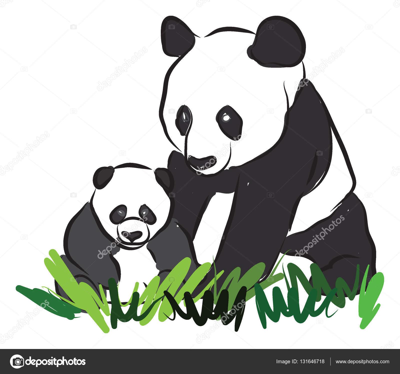 Deux pandas dessin illustration image vectorielle - Dessins de panda ...