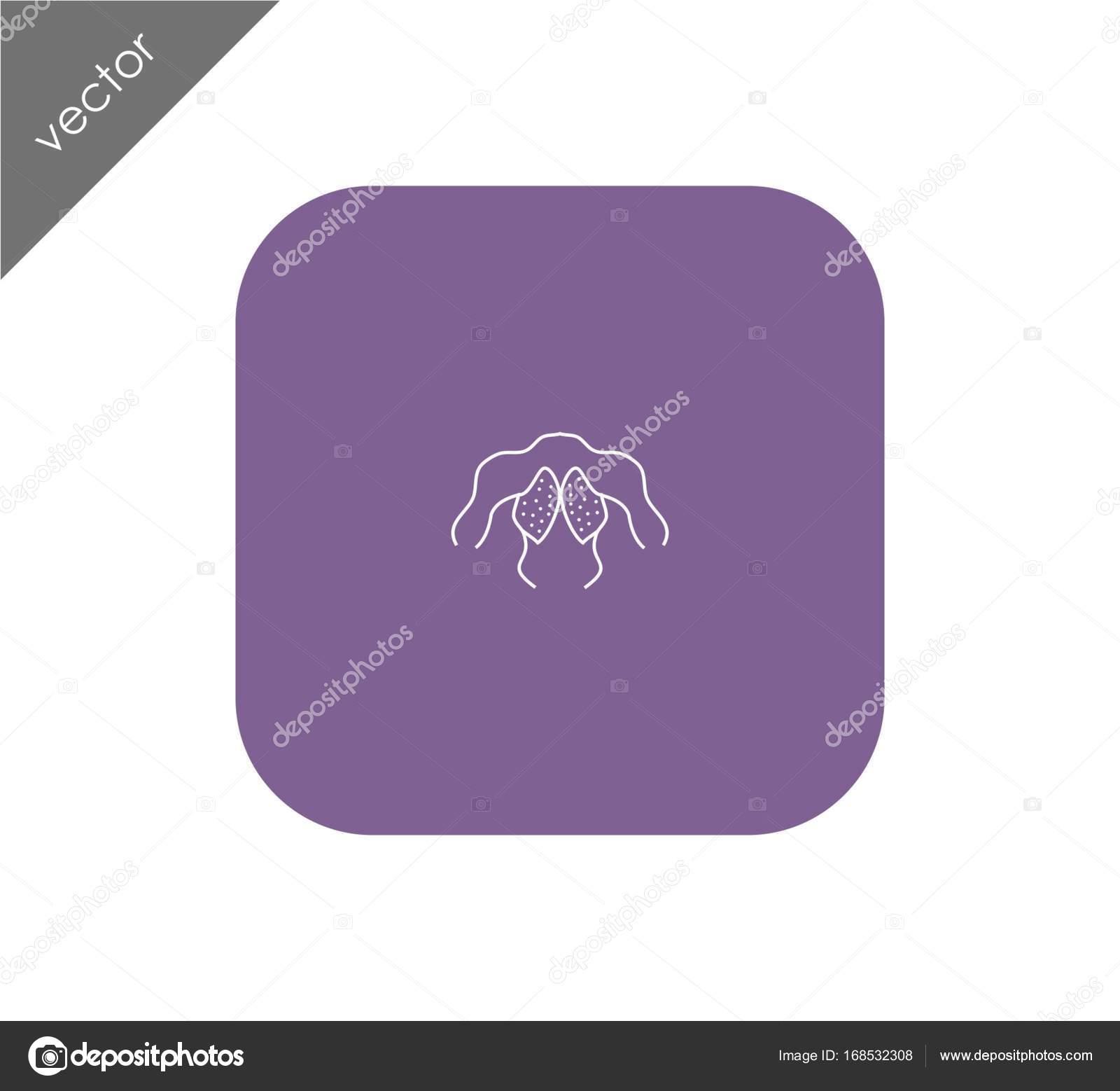 menschlichen Rückenmuskel-Symbol — Stockvektor © signsandsymbols ...