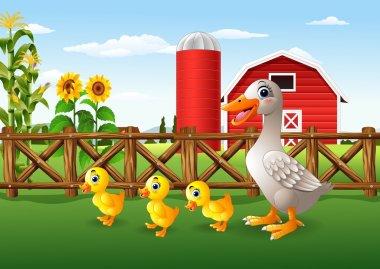 Cartoon duck family in the farm