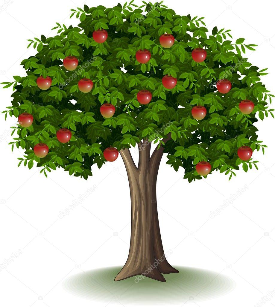 pomme rouge sur pommier — Image vectorielle ...